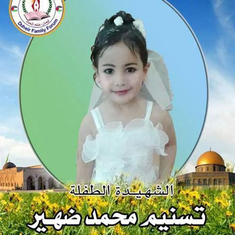 Tasneem Mohamed Salama Dhair