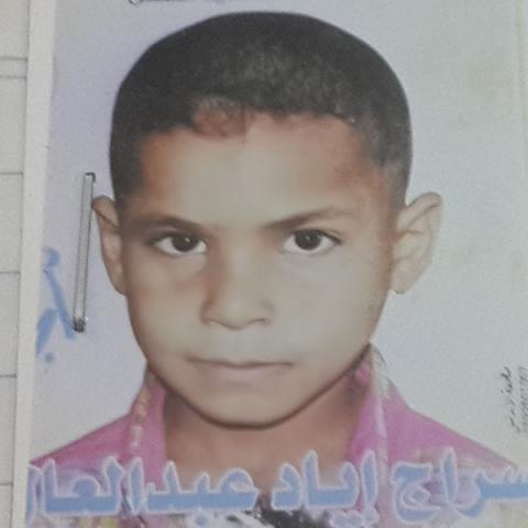 Seraj Iyad Abdel Aal